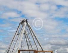 DSCN0153 bouw reuzenrad Scheveningen low-2