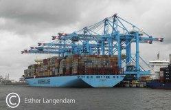DSCN1879 Container opslag