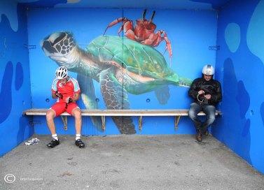 Foto 2 Wachten op het pontje bij Tiel